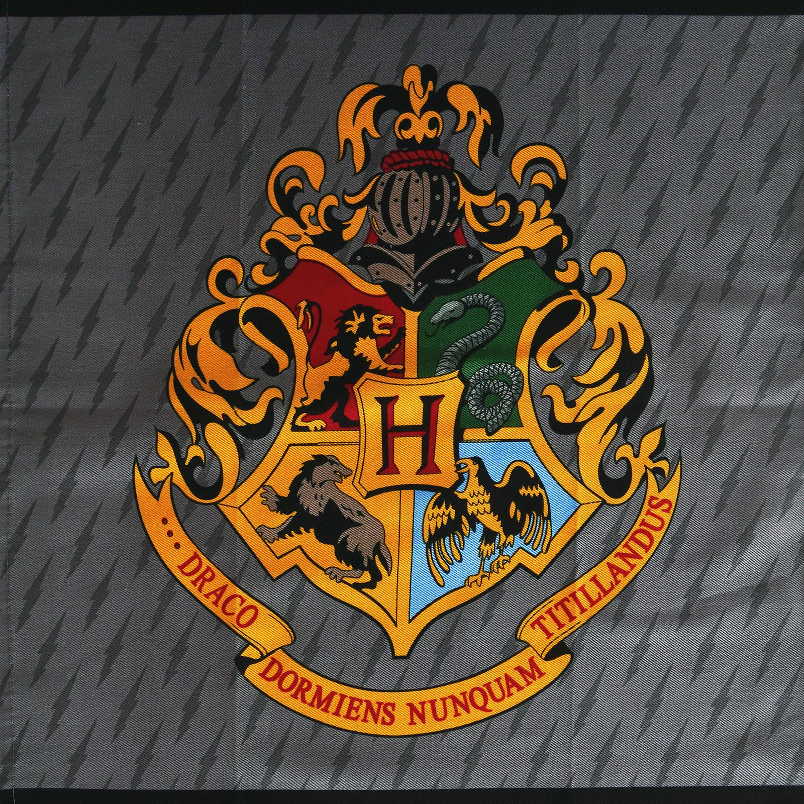 Harry Potter - Karte des Rumtreibers & Hogwarts Geschirrtücher Set