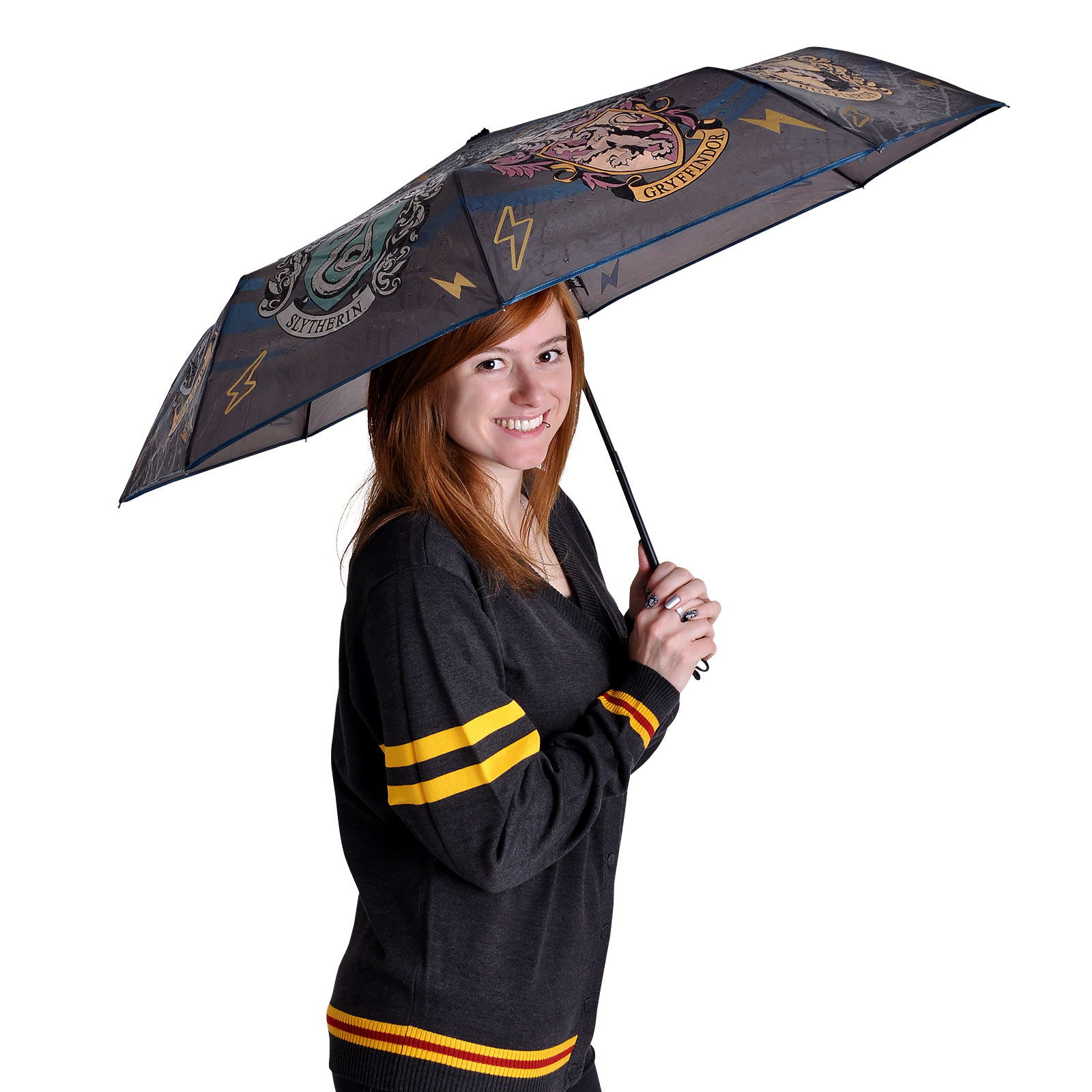 Harry Potter - Hogwarts Häuser Wappen Schirm mit Aqua Effekt