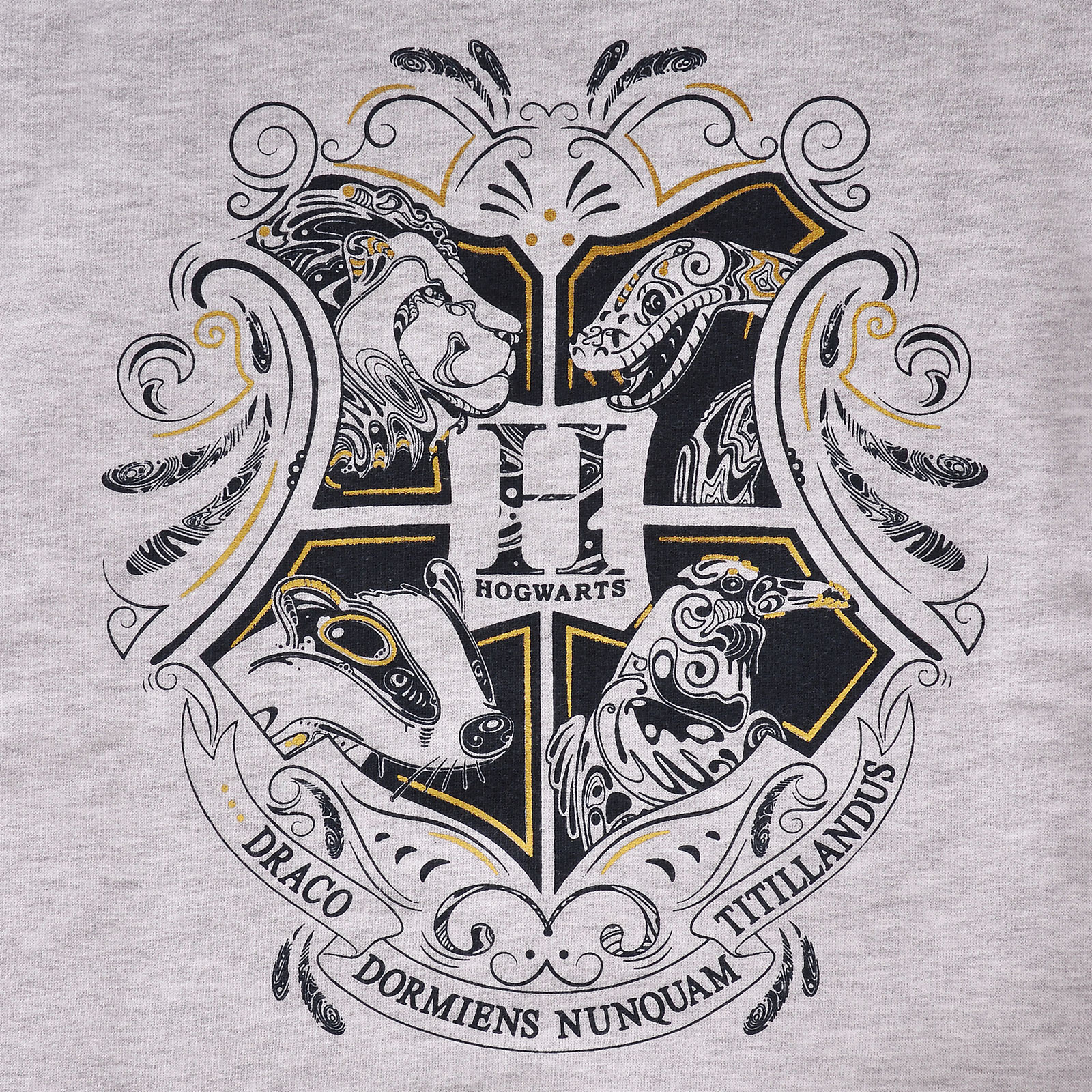 Harry Potter - Hogwarts Kinder Hoodie grau