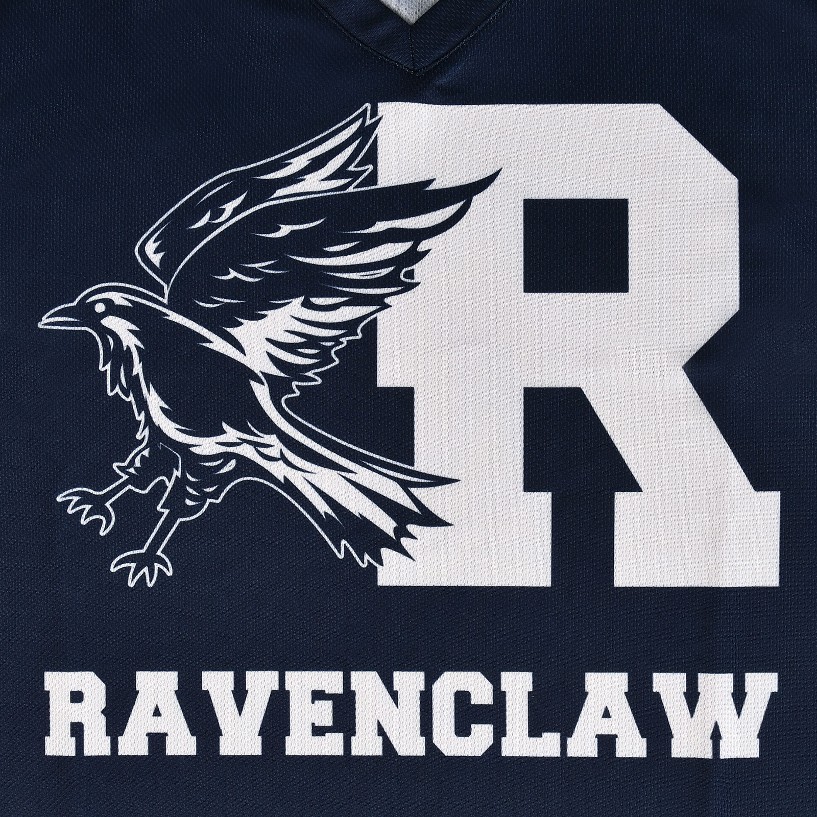 Harry Potter - Team Ravenclaw T-Shirt blau