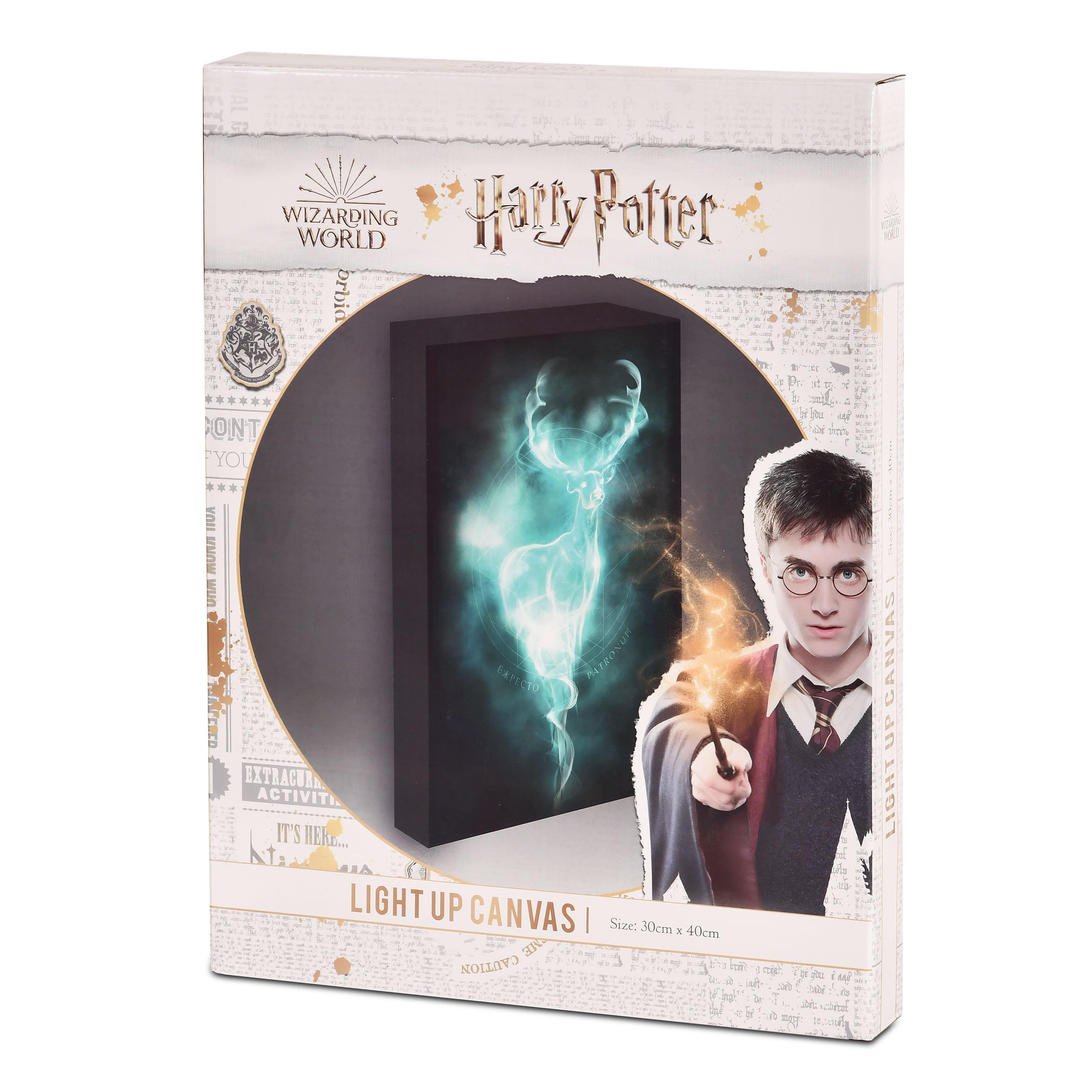 Harry Potter - Patronus Wandbild mit Licht
